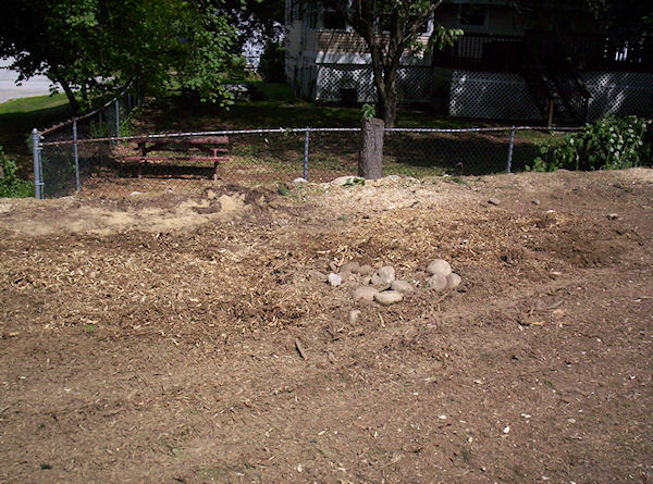 stump grinding sample project Bedford NH
