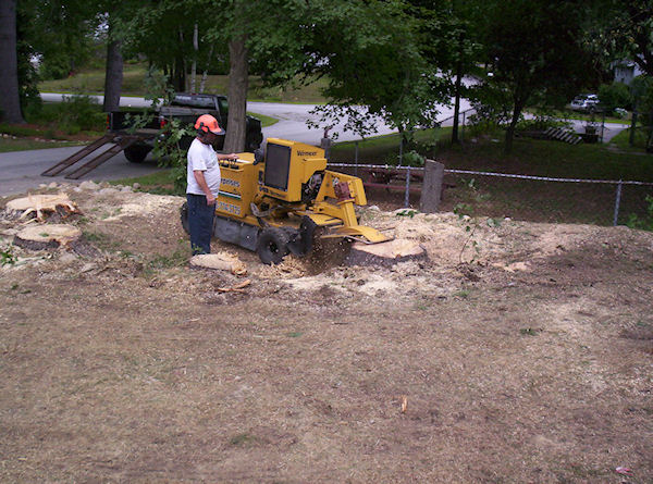 stump grinding sample project Amherst NH
