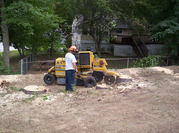 stump grinding sample project Epsom NH
