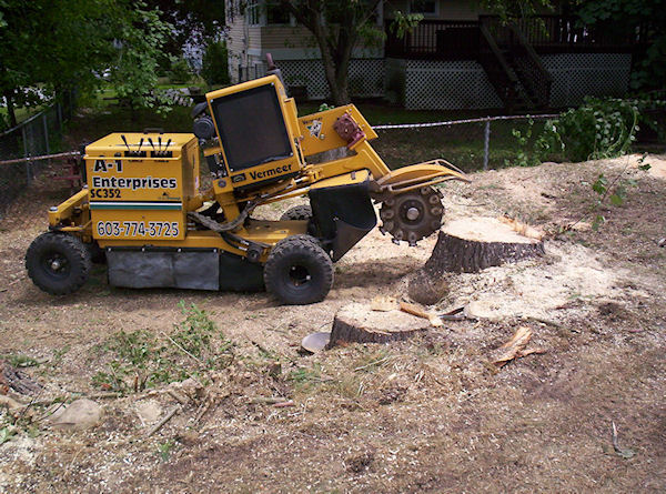 stump grinding sample project Loudon NH