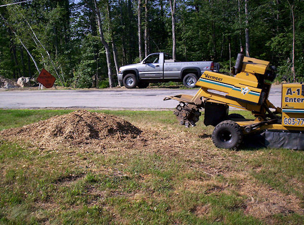stump grinding sample project Warner New Hampshire