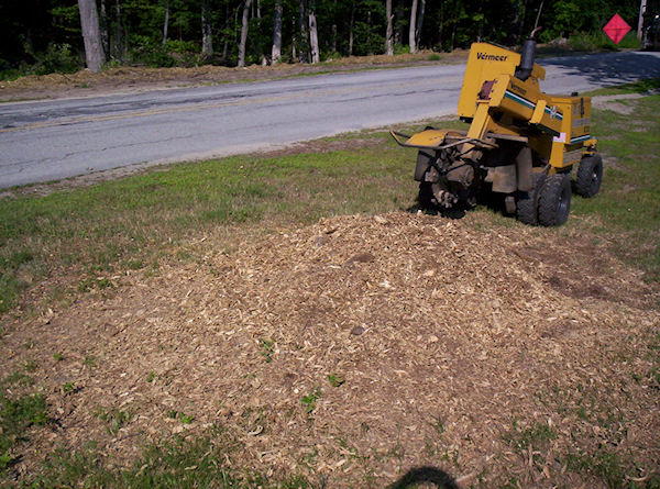 stump grinding sample project Dover New Hampshire
