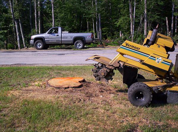 stump grinding sample project Tilton New Hampshire