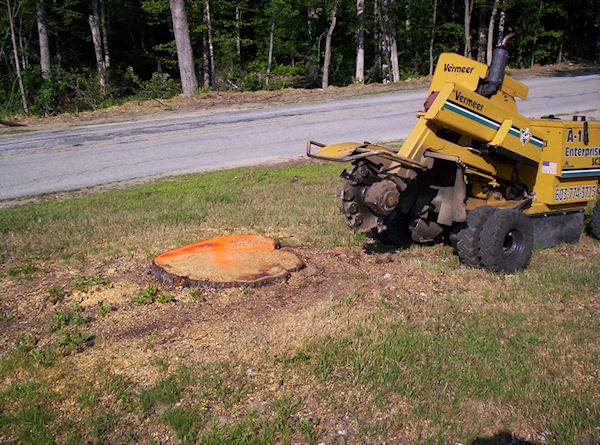 stump grinding sample project Nashua NH